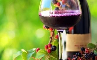 יין ישמח לבב אנוש וכל יקב?