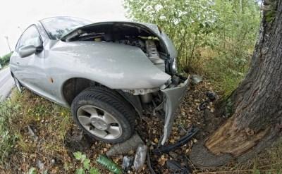 מכונית התנגשה בעץ - תמונת כתבה