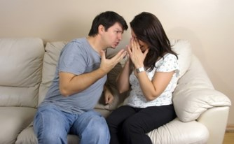 נכסי קריירה בין בני זוג