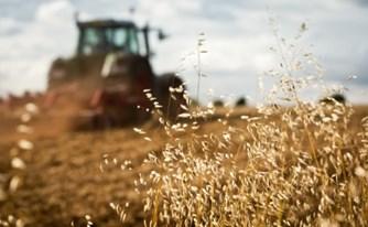 המחוברים למשק החקלאי - מה דינם במקרה של מות הבעלים?