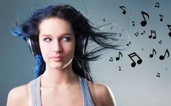 רשיונות להשמעה פומבית של מוסיקה בבתי עסק