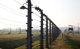החלטת הממשלה להוסיף מיליארד ₪ לניצולי השואה - דעה