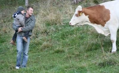 בן ממשיך במשק חקלאי - מהן זכויותיו? - תמונת כתבה