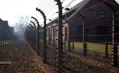 זכויות ניצולי השואה - מה קבע בית המשפט העליון? - תמונת כתבה