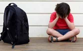 אלימות במוסדות חינוך - המצב המשפטי