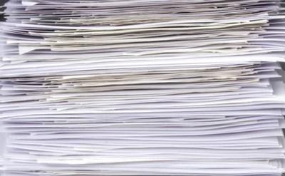 """דו""""ח עבס כרס שכולל ממצאים רבים - תמונת כתבה"""