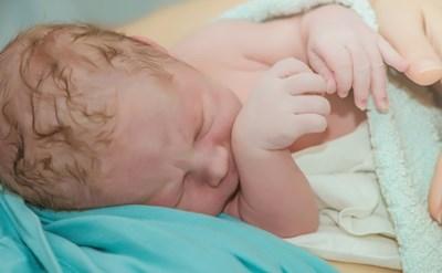 מייד לאחר הלידה - תמונת כתבה