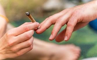 חוק קנאביס - ליהנות מעלה ירוק, בלי לעלות לניידת המשטרה