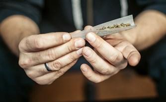 גידול קנביס: שימוש עצמי או סחר בסמים?