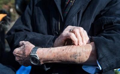 ניצול שואה מציג את המספר על ידו - תמונת כתבה