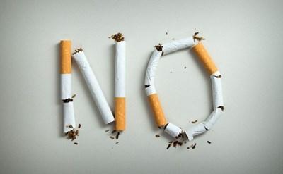 המאבק בעישון - תמונת כתבה
