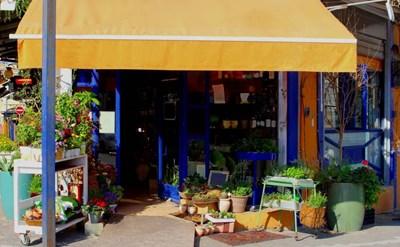 חנות, עסק קטן - תמונת כתבה