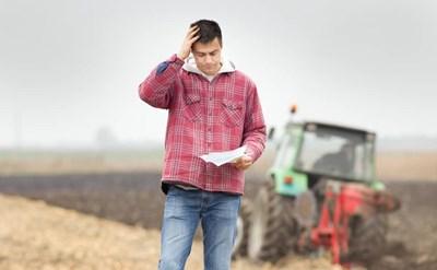 רשות מקרקעי ישראל חויבה לחשוף את כל הקלפים בפני החקלאי - תמונת כתבה