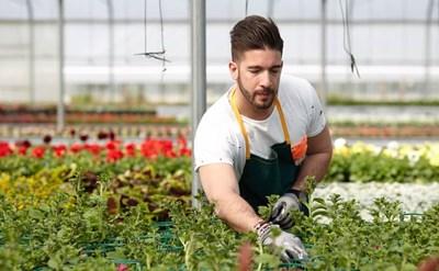 עובד חקלאות - תמונת כתבה
