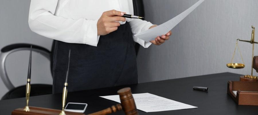 השופטת בוחנת את המקרה